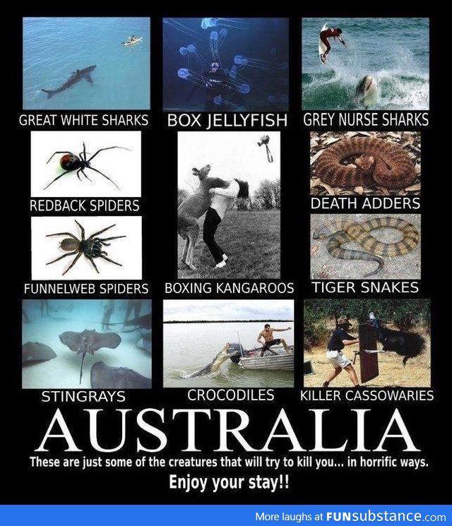 Australia, not even once FUNNY Pinterest Australia