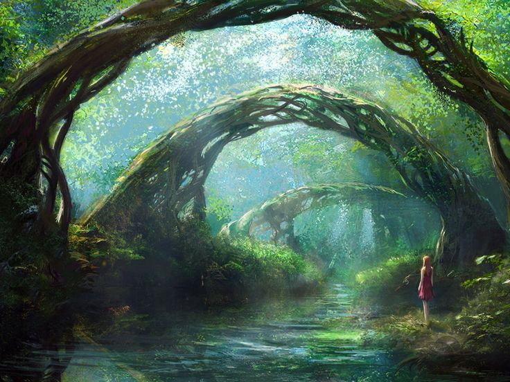 46 Best Images About Fantasy Forest Scene On Pinterest
