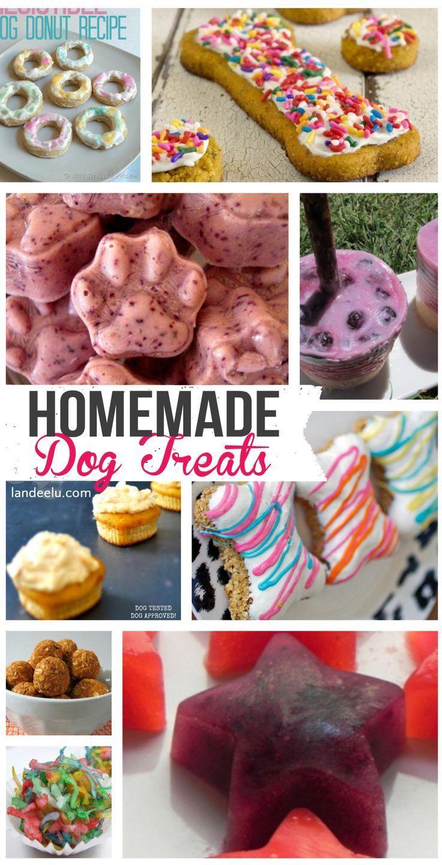 Homemade Dog Treat Recipes | landeelu.com Whip up a healthy homemade treat for you