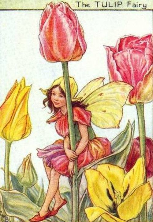 Tulip Fairy Digital Art Image Follow Me To The Magical