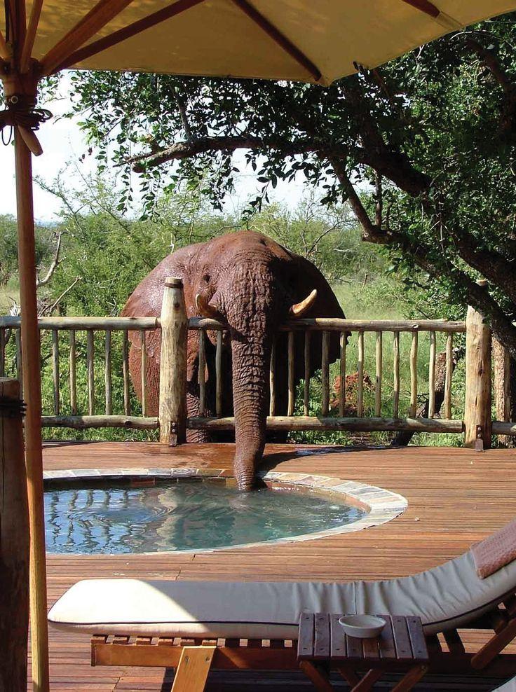 Etali Safari Lodge North West Province, Kenya (The lodge