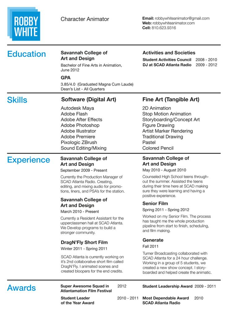 Animation Resume Examples Format Download