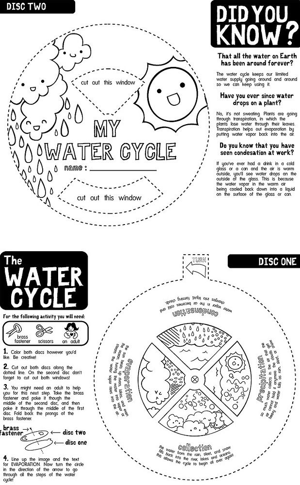 Water Cycle 1st GradeWeather Unit Pinterest