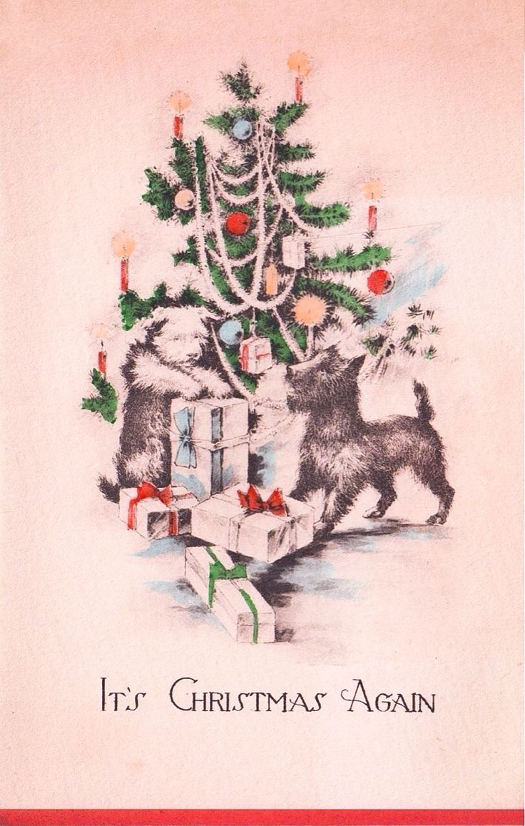 902 Best Images About Scottie Cards Christmas On