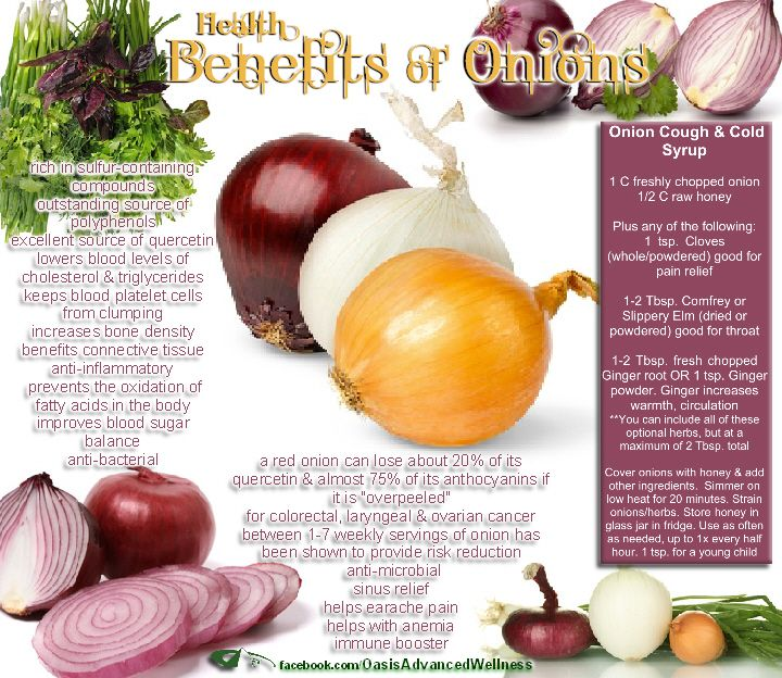 Health Benefits of Onions Health & Wellness Articles