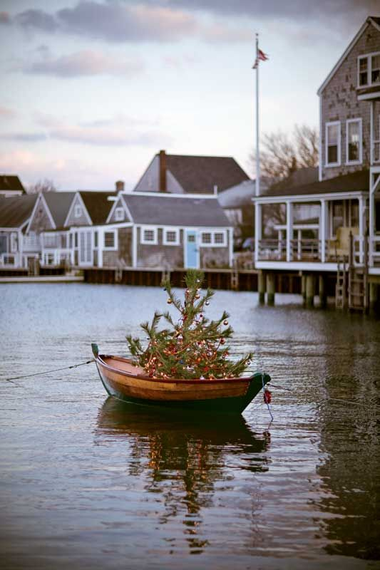 One of the cutest pictures I have ever seen! Have yourself a merry Nantucket Christmas ...:
