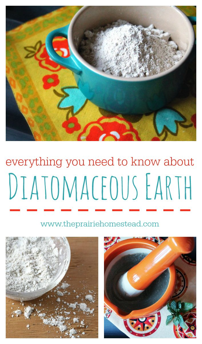 How to Use Diatomaceous Earth Gardens, Around the worlds