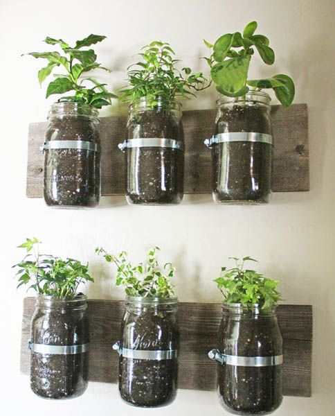 Wall Garden Design Ideas, DIY Projects for Decorating Small Spaces with Edible H