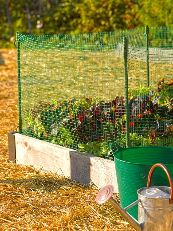 Rabbit Fence Low Pest Fence Mesh Garden Fence