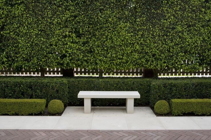 Love the Pleached Hedge and lower hedge Paul Bangay