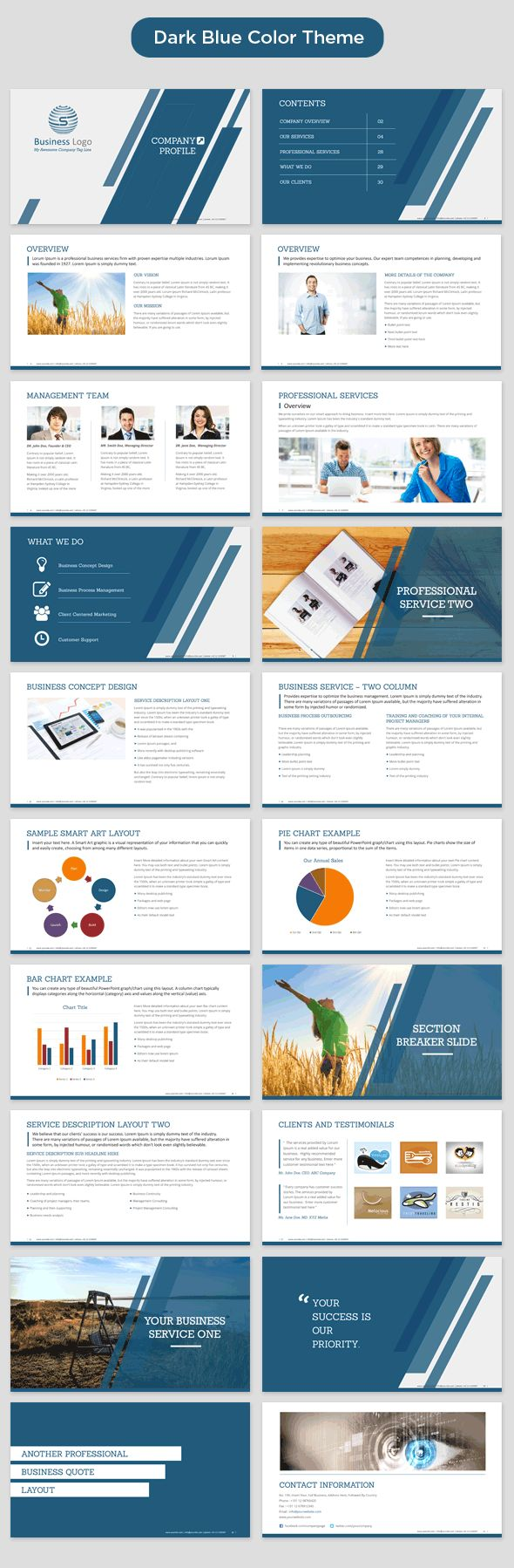 Business profile example free download cheaphphosting Choice Image