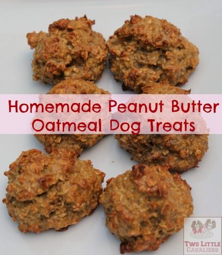 Homemade Peanut Butter Oatmeal Dog Treats 1/2 c. Oatmeal 1T. Peanut butter 1/2T. Water 1 large egg 1/8 t. Cinnamon 1/2 t. Honey Preheat oven to 350 degrees  Mix all ingredients together making sure