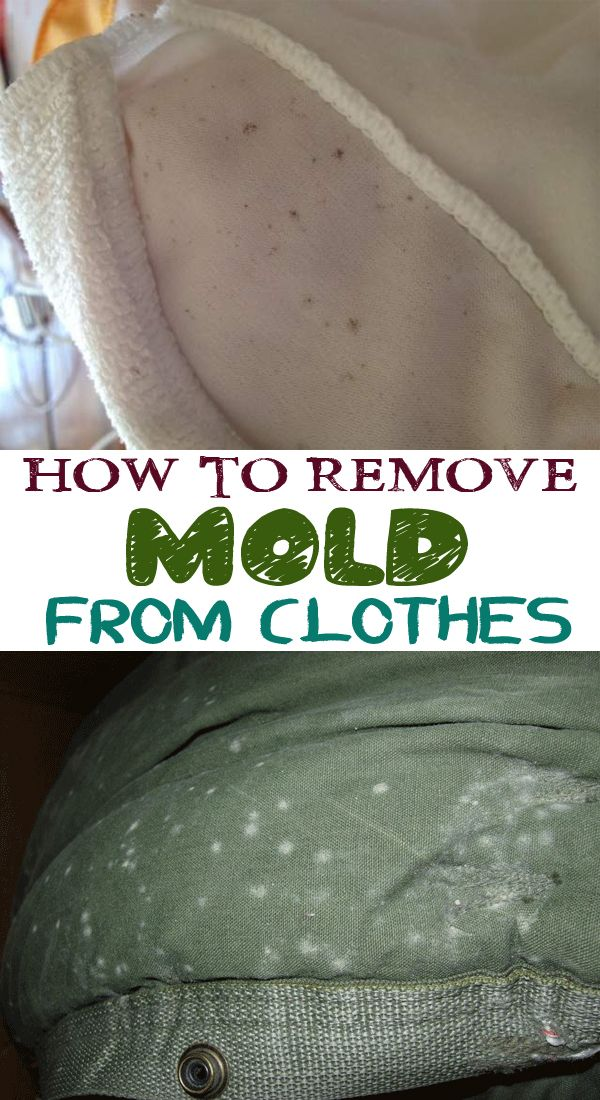 25 Best Ideas About Remove Mold Stains On Pinterest