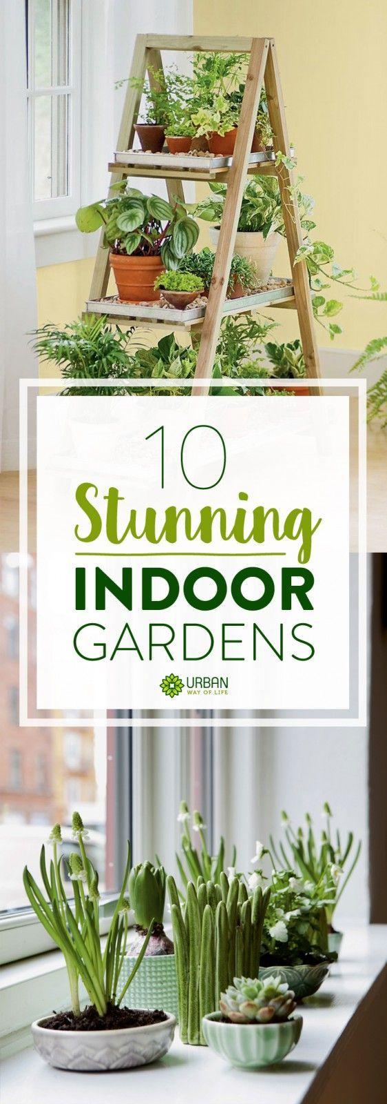 Get Inspired 10 Stunning Indoor Gardens Gardens, Indoor