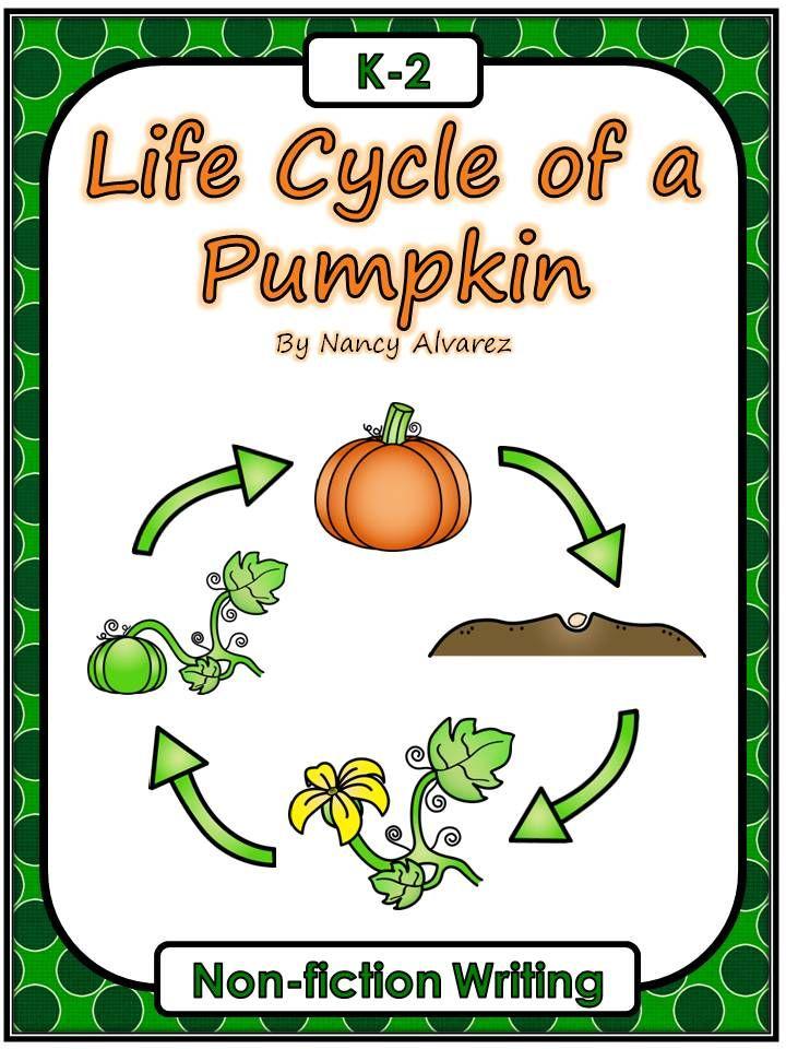 Life Cycle of a Pumpkin Freebie Pumpkins, Life cycles
