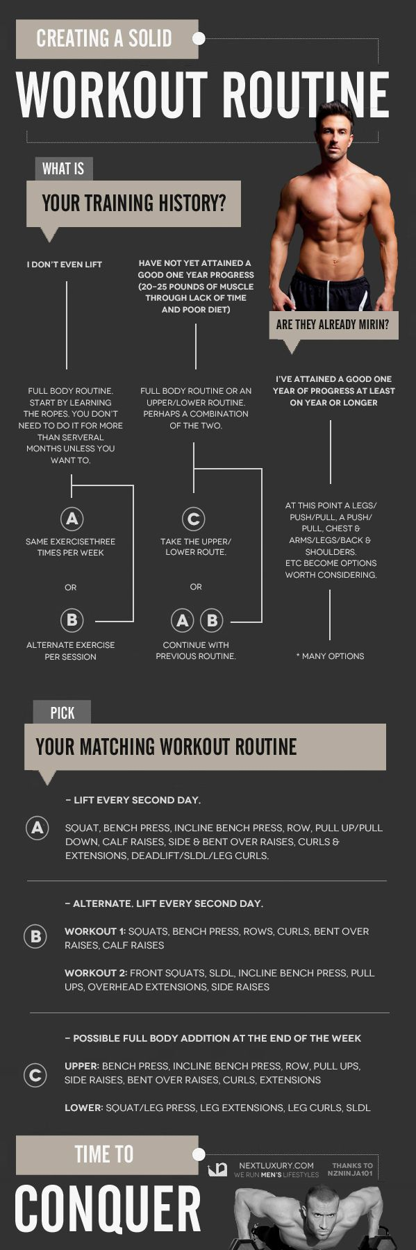 Exercise Routines Beginners