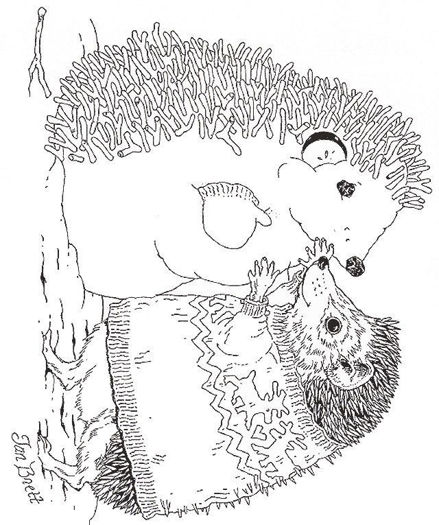 hedgehogs snowman and jan brett on pinterest