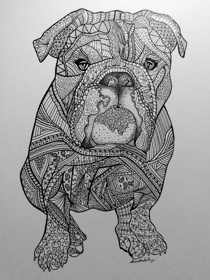 Zentangle drawing of Lola the bulldog. Visit