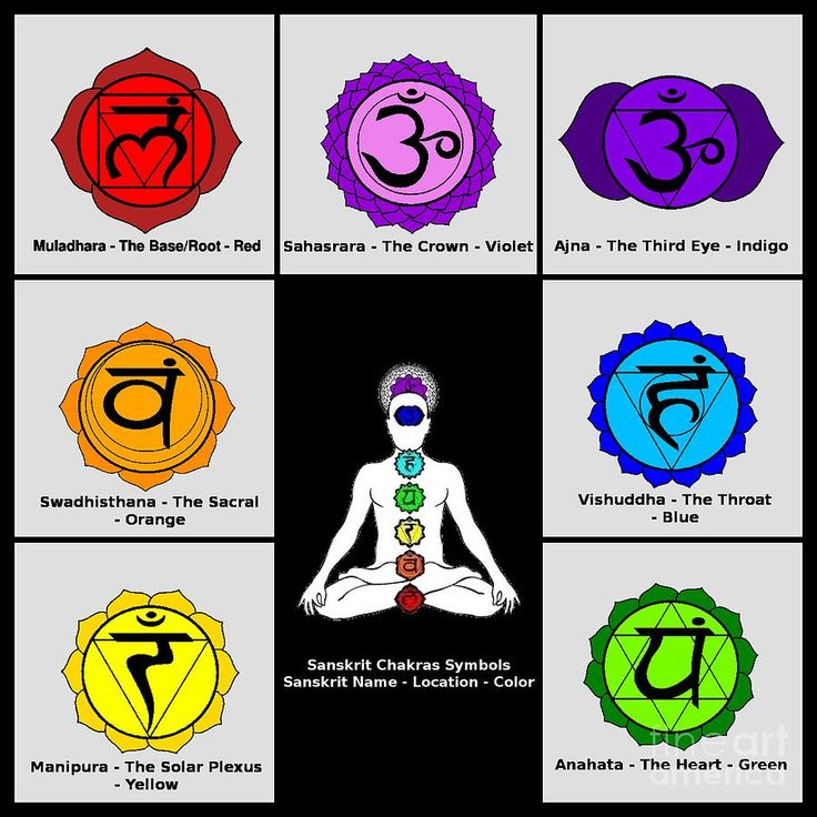 The SevenChakra Their Sanskrit Names and the Color Co