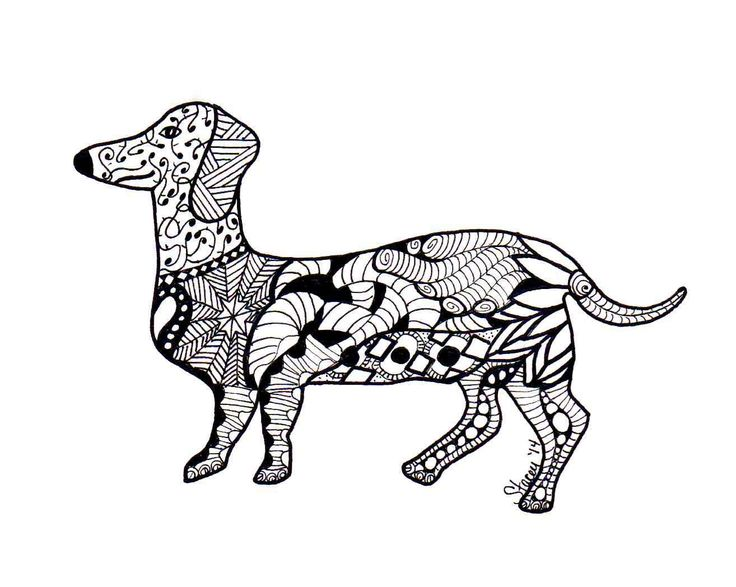 14 best images about zentangle dachshunds on pinterest