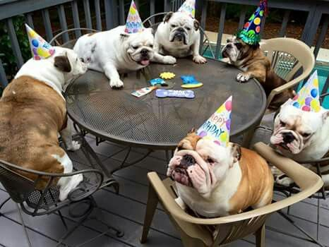 Look How Cute The Guests Are At This Birthday Party