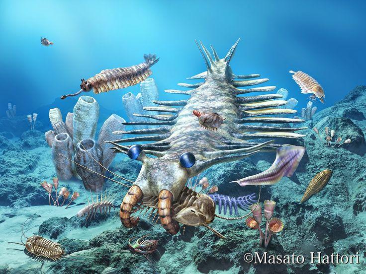 Cambrian Explosion Prehistoric Animals Pinterest