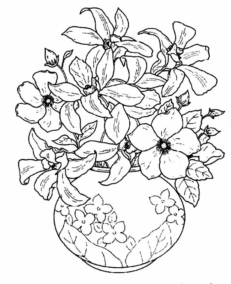 Flowers vase, Beautiful flowers and Vase on Pinterest | colouring pages flowers in a vase
