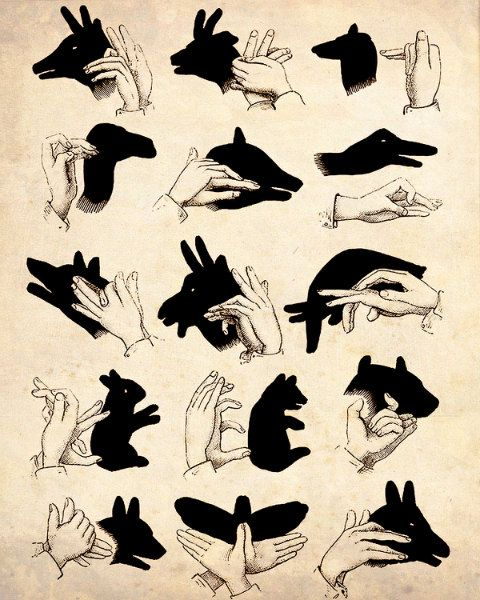 shadow puppet guide: yay! all these years Ive been eeking by with a sad butterfl