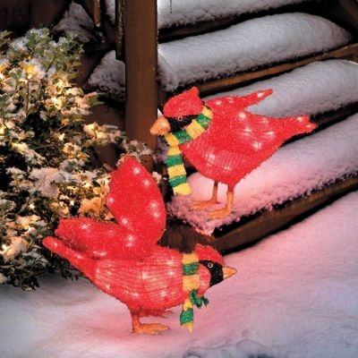 Lighted Christmas Cardinals Set Of Two Outdoor Christmas