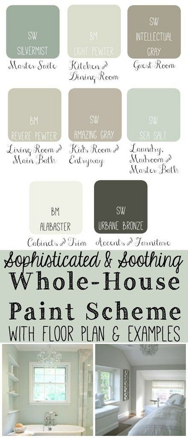 Whole House Paint Scheme s: Master Bedroom: SW Silvermist. Kitchen and Dining Room: BM Light Pewter. Guest Bedroom: SW