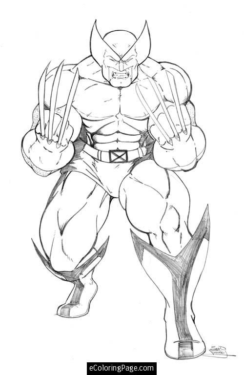 marvel wolverine coloring pages  thor  pinterest