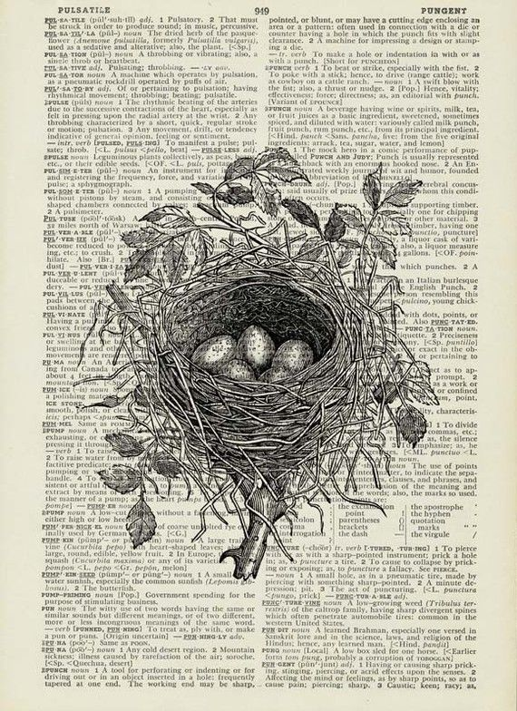 birds nest I dictionary page print Cute cards, The nest