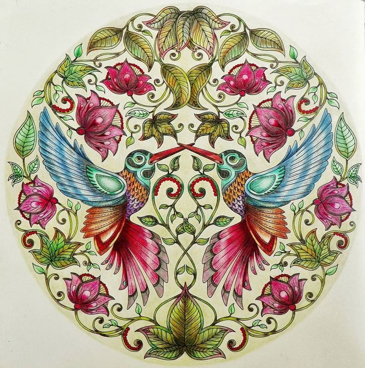 0 images about enchanted forest coloring book