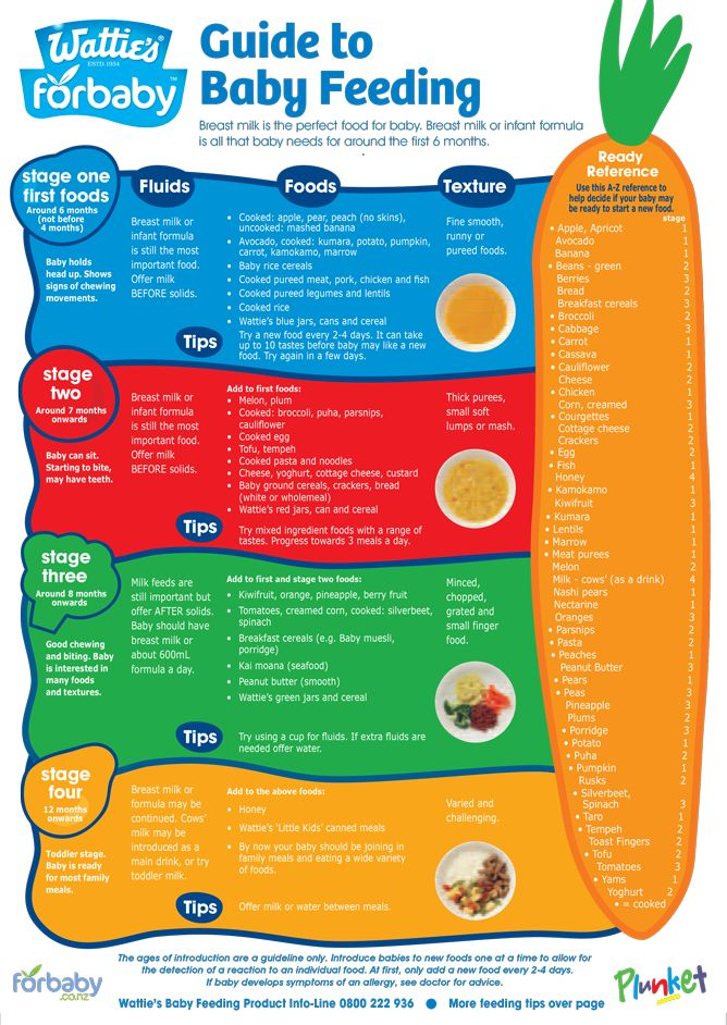 Guide to baby feeding fridge chart For Baby NZ Graesun
