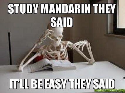 study chinese meme
