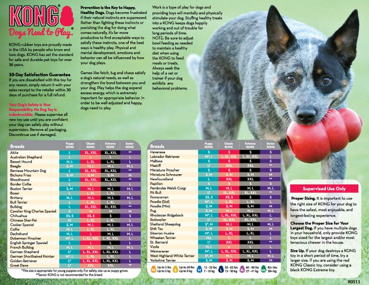 Kong's chart for what size Kong to get your breed of dog