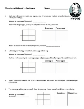 Animal Worksheet New 852 Animal Parents And Offspring