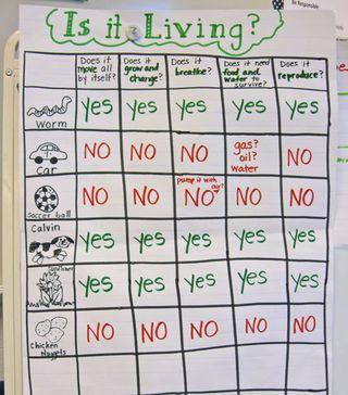 Living vs Nonliving?