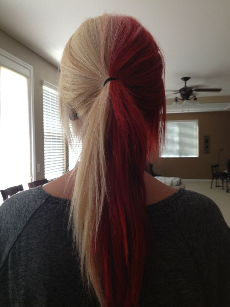 25 Best Ideas About Half Colored Hair On Pinterest Dyed