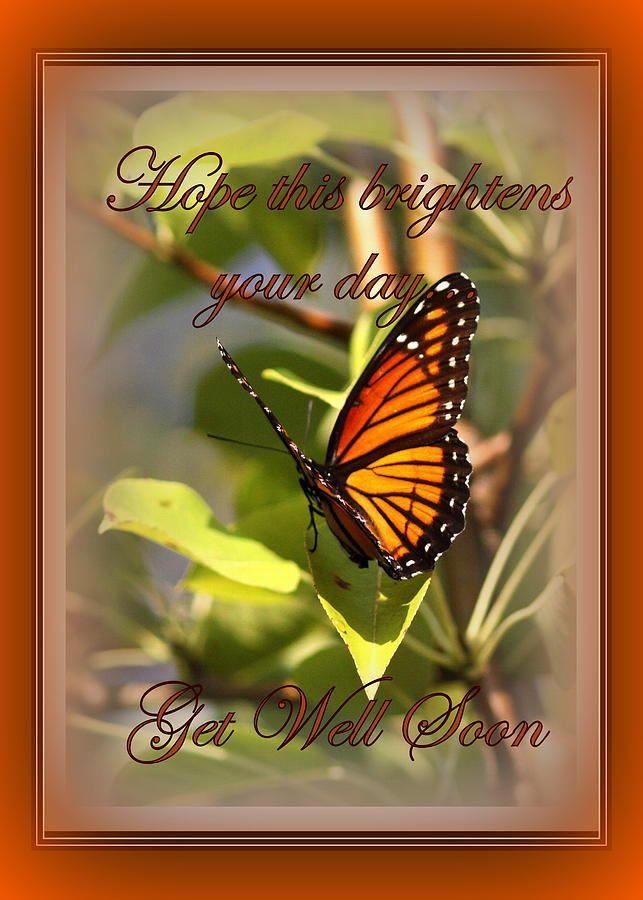 35 Best Images About Get Well Wishes On Pinterest Get Well Get Well Soon Messages And Get