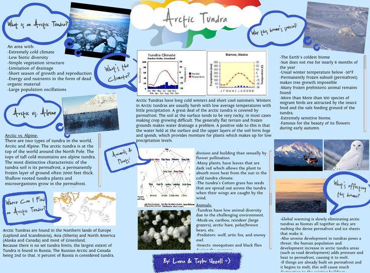 Arctic Tundra Biome School Project Biome Arctic