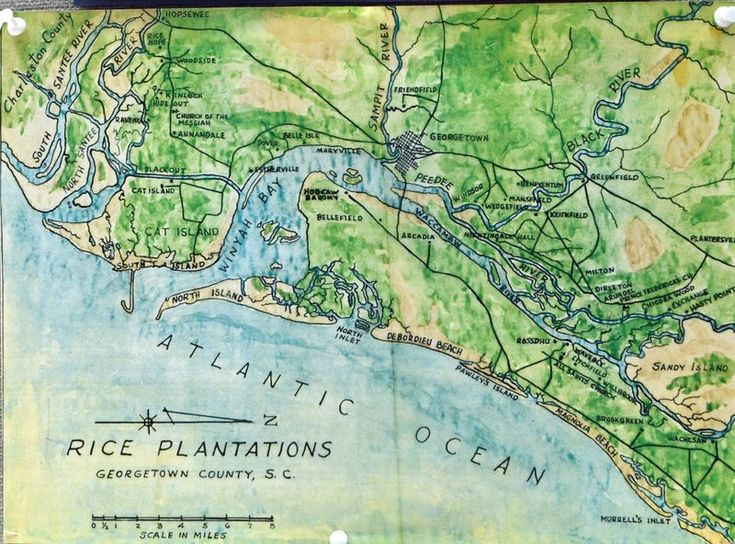 Map of Rice Plantations in County SC by the SC
