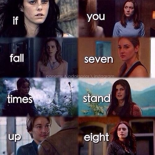 The Maze Runner, The Host, Harry Potter, Divergent, The Hunger Games, Percy Jackson, The Fault in Our Stars, and The Mortal