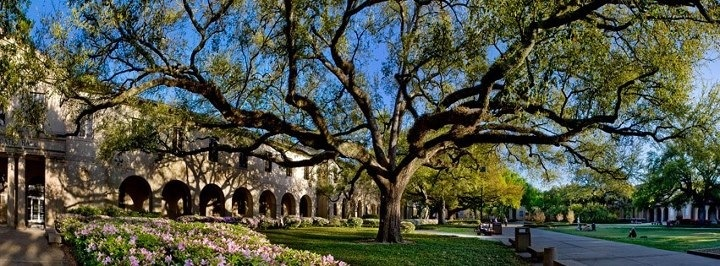 The Quad on LSU's beautiful campus. Tigers Tigers Geaux