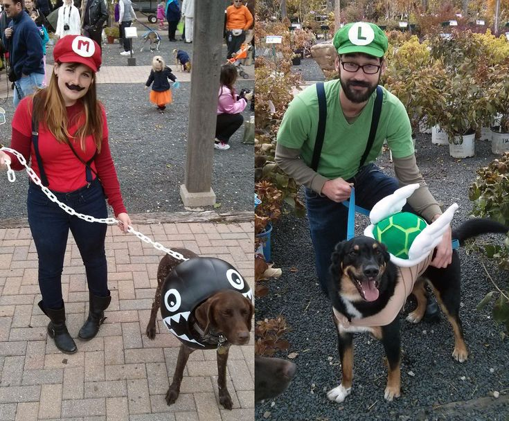 Mario Themed Costumes for Dogs and People Halloween