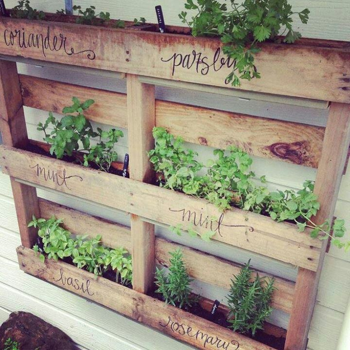 decorative herb garden for those bare outside walls