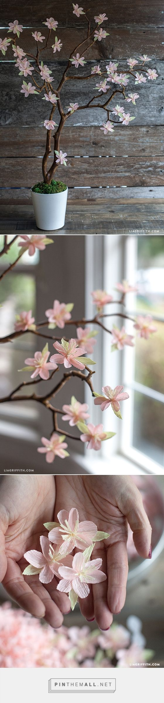 Crepe Paper Cherry Blossom Branches – Lia Griffith