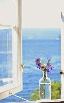 serenity view