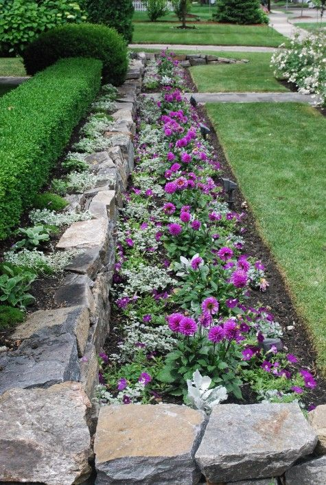 Hedge, rock wall, flower bed For the Home Pinterest