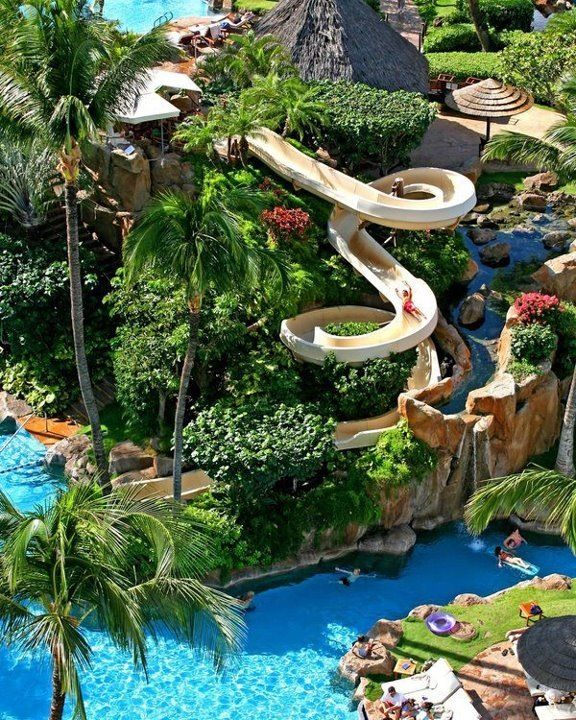 Westin Maui Resort and Spa Fun fact - there are no snakes in Hawaii! Yet another reason to want to go!!: